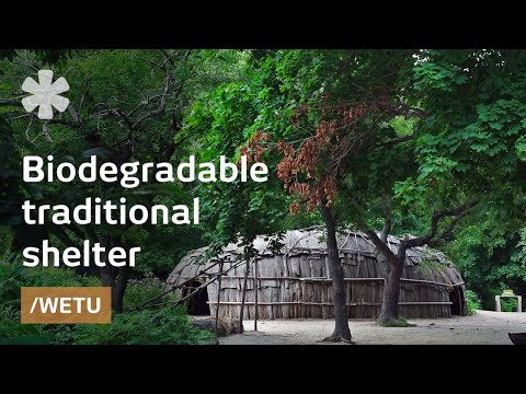 Wampanoag wetu: biodegradable house-dome before Bucky Fuller