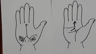 (손금) 제3강: Y자 운명선과 영향선