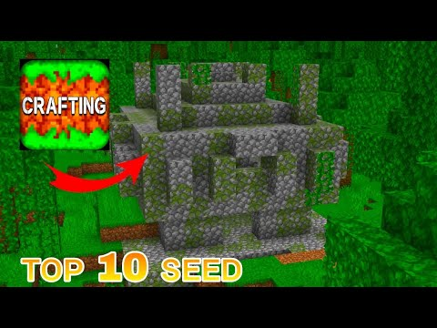 Top 10 Seeds – Crafting and Building