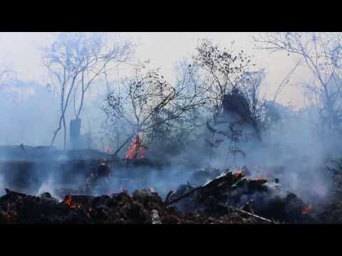 Malaysia ToHelp Put Out Indonesian Forest Fires