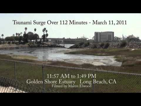 Tsunami Time Lapse Long Beach 3 11 11.mp4