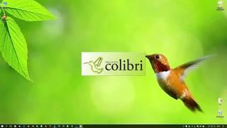 Projecto Colibri RCP 12 - Séries