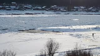 В Усть-Куте жители ул. ледорезной переходят реку лену по неокрепшему льду