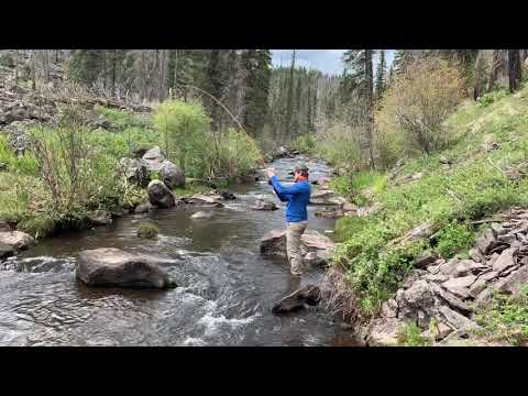 Fly Fishing In The White Mountains Of Arizona