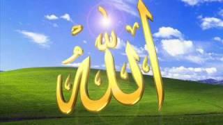 Surah taghabun voice of abdul rehman al-sudais with urdu translation