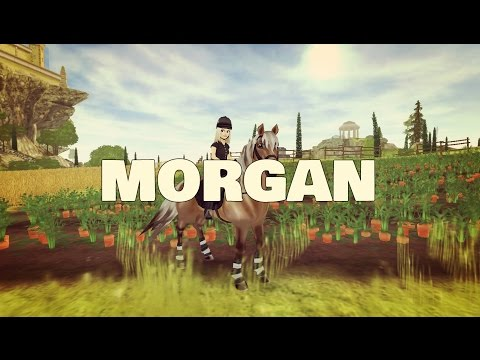[SSO] Buying my Morgan Horse!!!