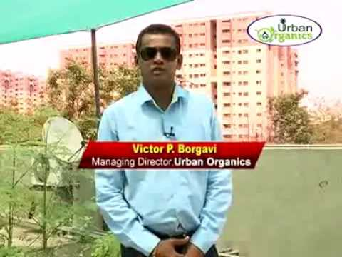 Etv Urban Organics   Awareness Program   Excellent