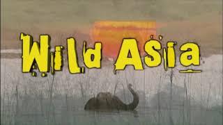 Wild Asia (Sample Program) - English
