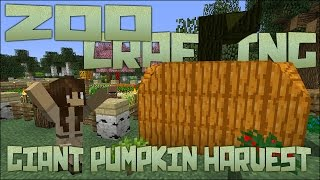 Zoo Crafting: Side Quest! Giant Pumpkin Harvest!!