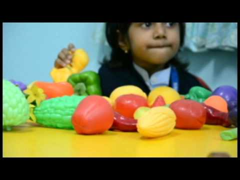 NEW INDIAN MODEL SCHOOL SHARJAH |Documentary