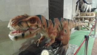 Динозавр в Детском мире.