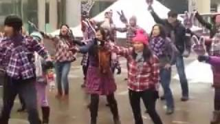 Video Ahok Djarot Flash Mob - Montreal - Canada - 12 February 2017 download MP3, 3GP, MP4, WEBM, AVI, FLV November 2017
