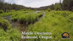 Fly Fishing the Deschutes-Redmond Oregon