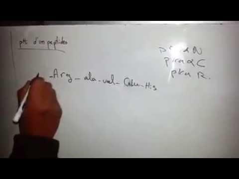 comment calculer le phi d