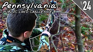 PA PUBLIC LAND CHALLENGE! - Day 3: Arrow Released!