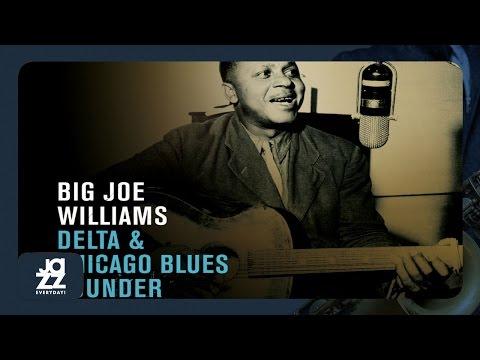 Big Joe Williams - Mellow Apples