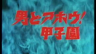 1970年(昭和45年)9月28日~1971年(昭和46年)3月27日日本テレビ系 全156話(1話10分)原作:佐々木守、まんが:水島新司、制作:東京テレビ動画.