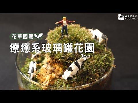 【玻璃罐微境綠花園】一只玻璃罐打造自己的微型植物園!不只觀賞,更是自然生態觀察!大人小孩都適合!