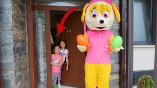 Easter Egg hunt Surprise Toys Challenge for Kids Pretend Play, fun video