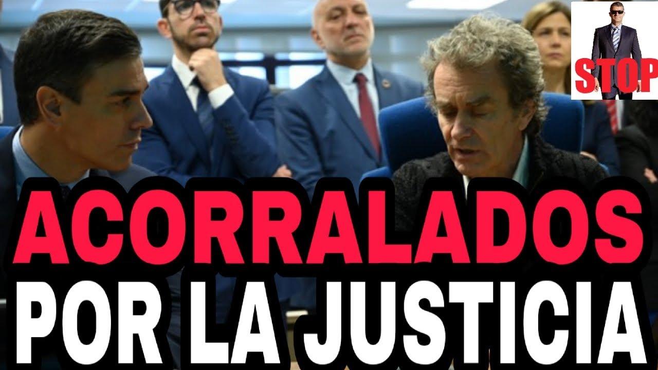¡NOTICIÓN! ¡IMPUTADO EL GOBIERNO POR PERMITIR EL 8M Y MARLASKA FULMINA AL JEFE DE LA GUARDIA CIVIL!