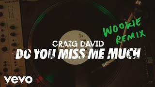 Craig David - Do You Miss Me Much (Wookie Remix) [Audio]
