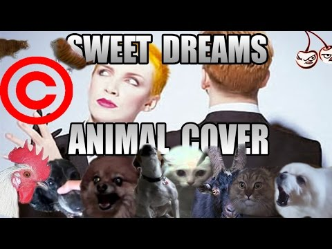 Eurythmics - Sweet Dreams (Animal Cover) [REUPLOAD]