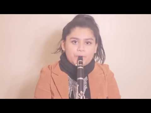 Havana-Camila Cabello (Clarinet Cover)