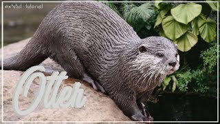 European Otter Exhibit!