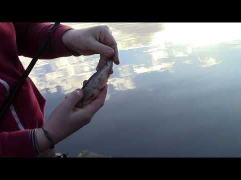 Angling Addicts Episode 1 pike fishing