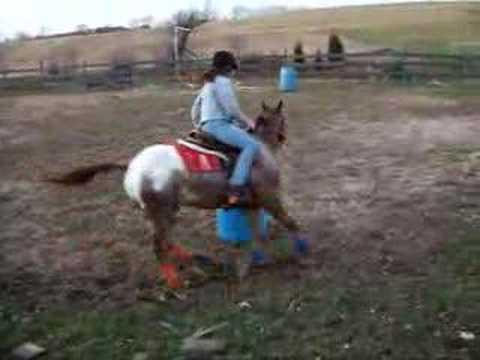 Layne On Billy Barrel Racing