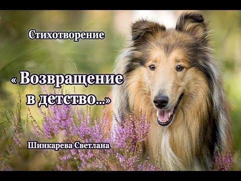 """""""Я по летней дорожке тихонько иду.."""" стих, Шинкарева Светлана """"Возвращение в детство.."""""""