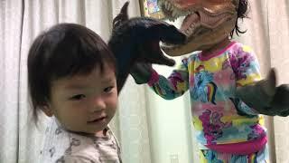 恐竜バトル! あいちゃんサウルス VS しーくんサウルス Dinosaurs Battle!!