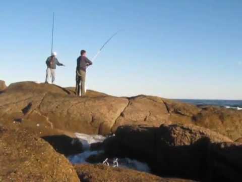 Pescando sargos en Jose Ignacio, Uruguay