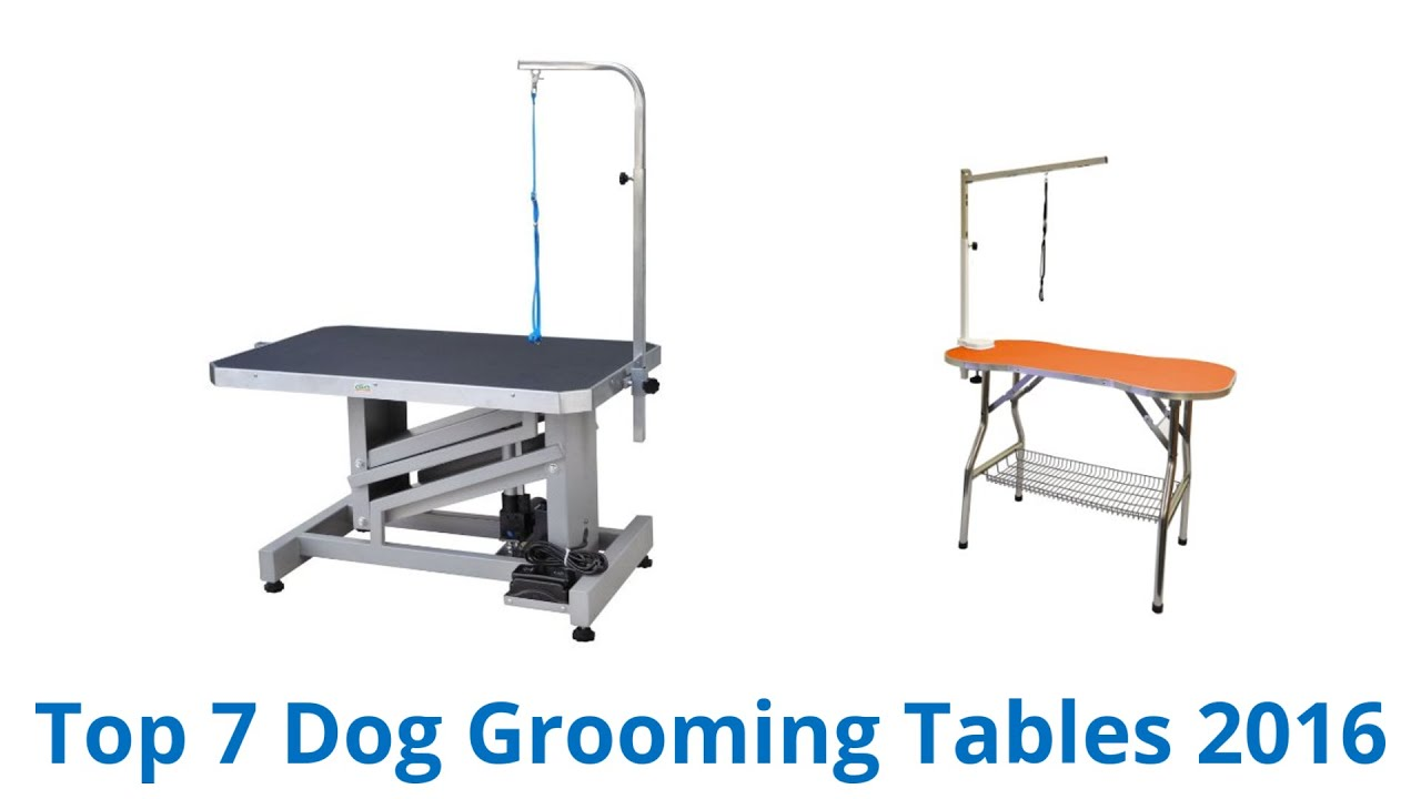7 Best Dog Grooming Tables 2016 YouTube