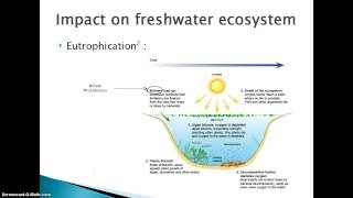impact of agricultural pollution on freshwater ecosystems