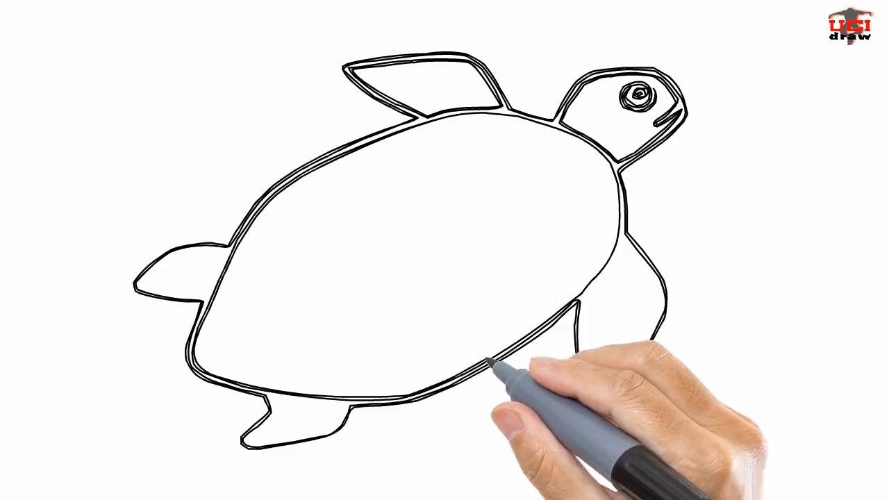 Uncategorized How To Draw A Turtle For Kids how to draw a turtle easy drawing step by tutorials for kids youtube