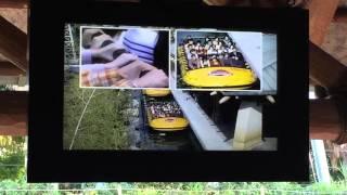 高画質 usj ジュラシックパークライドの注意事項ビデオ