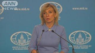 ロシア外務省 「戦争」発言の丸山議員を批判(19/05/24)