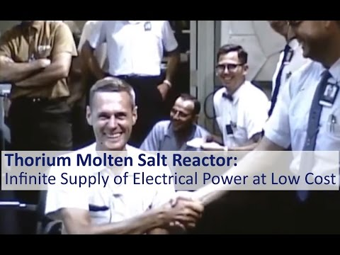 Thorium Molten Salt Reactor: Infinite Supply of Electrical Power at Low Cost