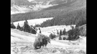 DSSk Povoja - Trávnice zo Selca (Slovak Meadow Songs)