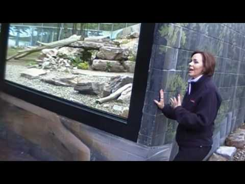 Behind the Scenes at Penn's Cave Wildlife Park