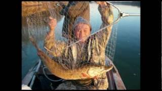 Рыбалка на Оби. Сузунский район Новосибирская область..