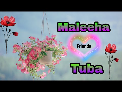 """tuba-and-maleeha""-name-whatsapp-status....