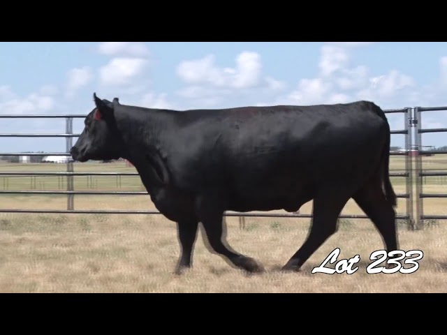 Pollard Farms Lot 233