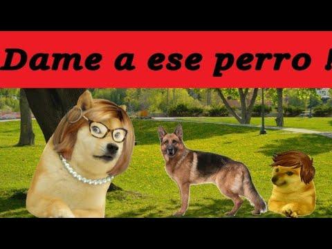 Download Abro hilo :  CUANDO MADRE CON DERECHO CASI ME ROBA A MI PERRO