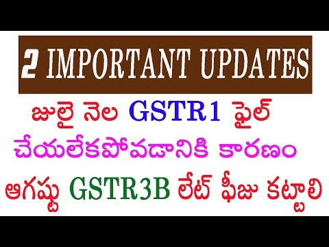 2 Important updates, July month GSTR1 unable to submit, August GSTR3B late fee