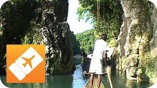 Jamaika, die Perle der Karibik | Reisefieber Mittelamerika