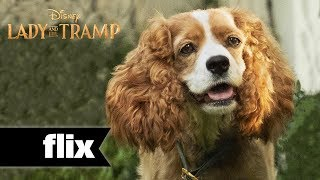 Lady & The Tramp: Meet The Dogs (2019)