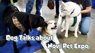 Talking Dog Sam Visits Pet Expo to see Gone To the Snow Dogs !
