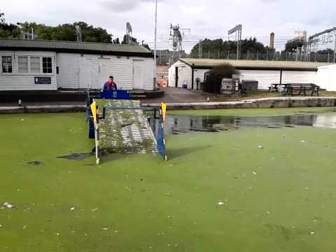 Duck weed removal on the Regent's Canal